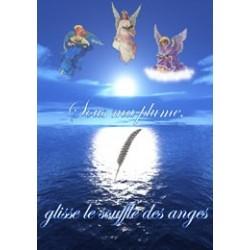 Livre 5 - Sous ma plume, glisse le souffle de anges